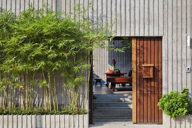Hướng dẫn những vị trí đặt cây cảnh trong nhà tốt cho phong thủy - Ảnh 1.