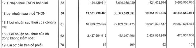 Quốc Cường Gia Lai (QCG): Doanh thu đột biến nhờ bàn giao dự án, lãi ròng vẫn giảm mạnh 43% trong quý 1/2021 - Ảnh 2.