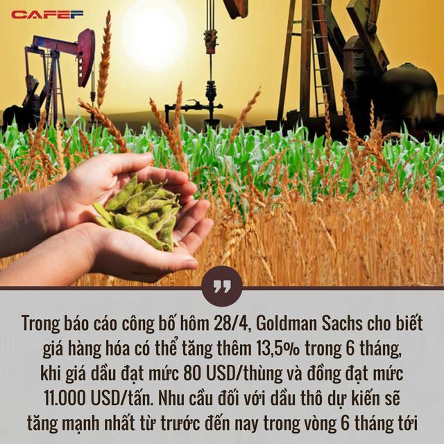 Giá hàng hóa tăng lên mức cao nhất trong gần 1 thập kỷ, thế giới đang đối mặt với siêu chu kỳ?  - Ảnh 2.