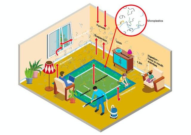 Hơn 6.000 hạt vi nhựa lắng đọng trên mỗi mét vuông nhà bạn mỗi ngày, chúng có thể gây hại như thế nào? - Ảnh 2.