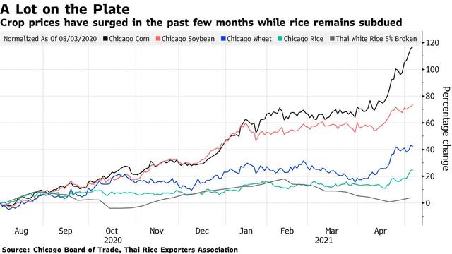 Mặt hàng chủ lực trong xuất khẩu của Việt Nam là lực cản làn sóng tăng giá lương thực toàn cầu - Ảnh 2.