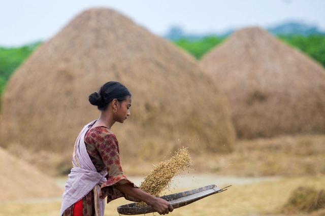 Mặt hàng chủ lực trong xuất khẩu của Việt Nam là lực cản làn sóng tăng giá lương thực toàn cầu - Ảnh 3.