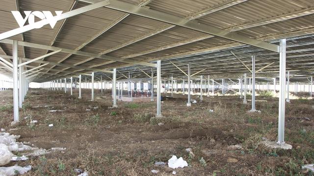 Vẽ dự án điện mặt trời trên mái trang trại ở Gia Lai: Hơn 300 dự án vi phạm  - Ảnh 1.