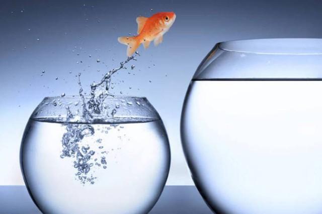 Sự khác biệt lớn nhất giữa một triệu phú và người thường: Làm thế nào để tư duy như một người thành công và giàu có?  - Ảnh 2.