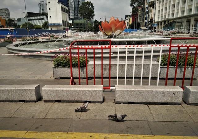 Phố đi bộ Nguyễn Huệ vắng lặng ngày giãn cách  - Ảnh 3.