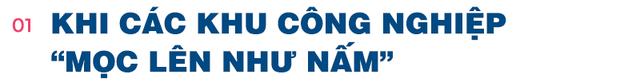 Kinh tế trưởng Mekong Economics: Việt Nam cần làm gì để tránh hiện tượng loạt KCN mọc lên như nấm? - Ảnh 2.