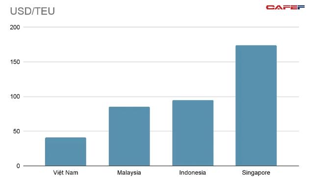 Cục Hàng hải Việt Nam: Vì sao cần xem xét kỹ khi điều chỉnh giá dịch vụ tại cảng biển? - Ảnh 1.