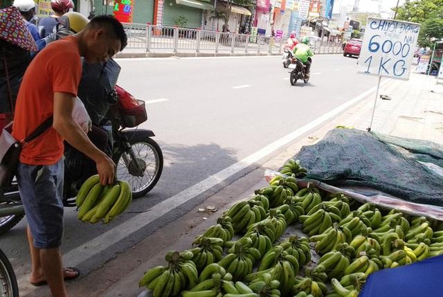 Giá chuối rớt thảm khi Trung Quốc thừa cung - Ảnh 2.