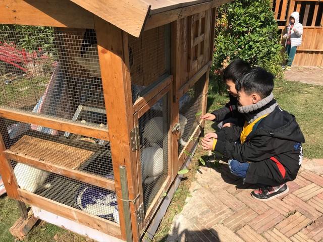 3 ngôi trường liên cấp đặc biệt ở Hà Nội - nơi trẻ được vẫy vùng giữa thiên nhiên, thoát khỏi gánh nặng điểm số: Hạnh phúc là tiêu chí giáo dục quan trọng nhất! - Ảnh 10.