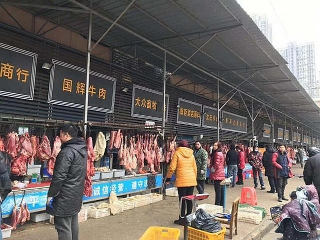 Phát hiện 47.000 động vật hoang dã bán ở chợ Vũ Hán trước khi Covid-19 bùng phát - Ảnh 1.