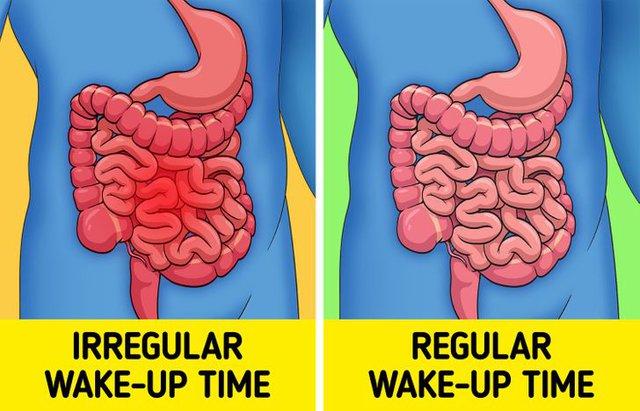 Lợi ích không ngờ khi duy trì thói quen đi ngủ, thức dậy đúng mỗi ngày: Vừa tốt cho tinh thần, sức khỏe tiêu hóa, vừa thúc đẩy hiệu suất cuộc sống - Ảnh 2.