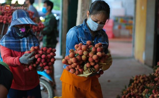 Ảnh: Người dân Bắc Giang thắp đèn từ 2 giờ sáng, đi thu hoạch vải thiều xuyên đêm - Ảnh 14.
