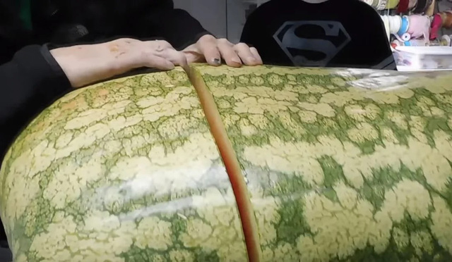 Trồng được trái dưa hấu nặng gần 130kg, tới lúc xẻ ra ăn, người đàn ông nước ngoài mới chết lặng vì cảnh tượng bên trong - Ảnh 3.