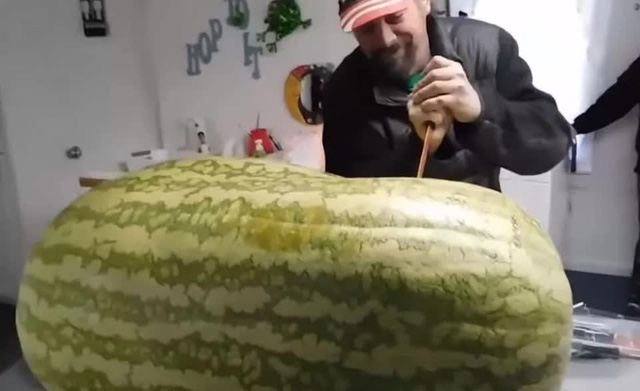 Trồng được trái dưa hấu nặng gần 130kg, tới lúc xẻ ra ăn, người đàn ông nước ngoài mới chết lặng vì cảnh tượng bên trong - Ảnh 7.