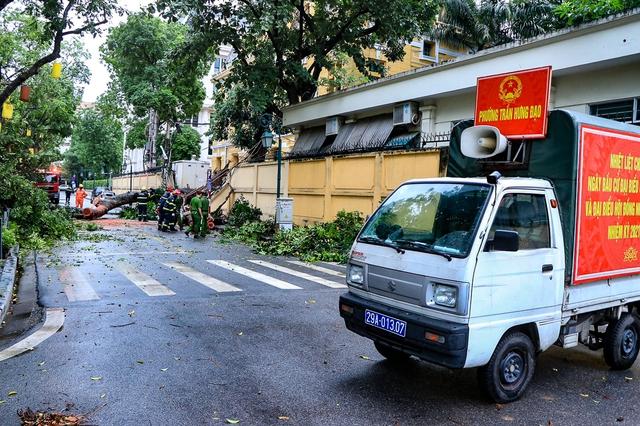 Hà Nội: Cây lớn bật gốc đè sập tường, chắn ngang phố Hoả Lò - Ảnh 1.