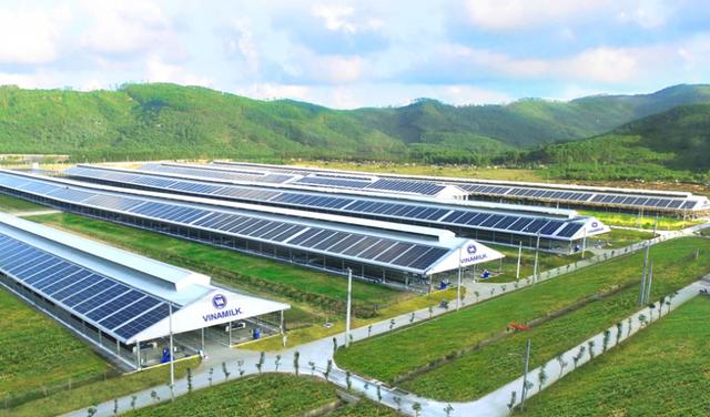 Forbes Việt Nam công bố Top 50 doanh nghiệp niêm yết tốt nhất 2021, Vinamilk giữ vững vị trí 9 năm liên tiếp - Ảnh 5.