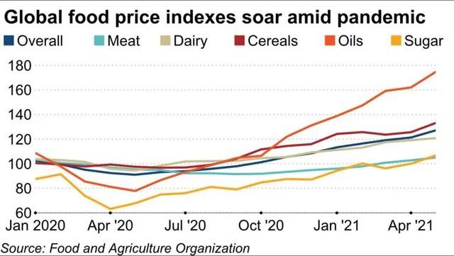 Giá lương thực tăng cao nhất 10 năm khiến người dùng, doanh nghiệp châu Á điêu đứng - Ảnh 3.