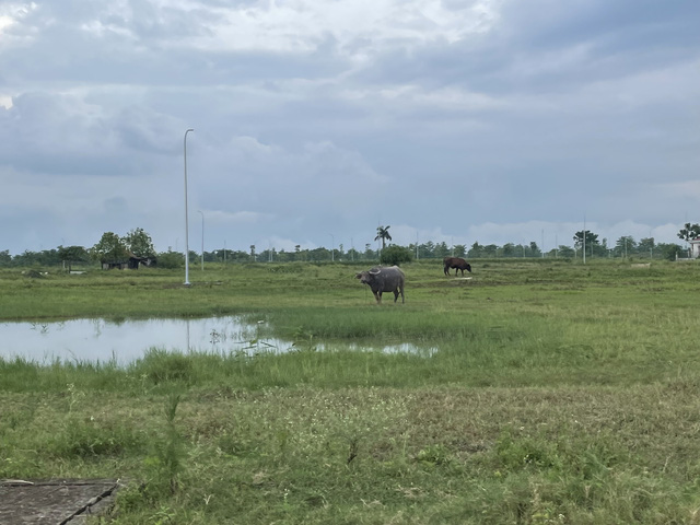 """Cập nhật giá đất ở Nam An Khánh, Mê Linh…và một số """"điểm nóng"""": Ngỡ ngàng nơi tăng nóng, chỗ rơi sâu - Ảnh 1."""