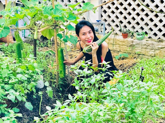 Khu vườn 100m2 xanh tươi của Thủy Tiên - Công Vinh trong biệt thự ở khu nhà giàu: Đầy rau trái xum xuê, ai cũng mơ ước! - Ảnh 6.