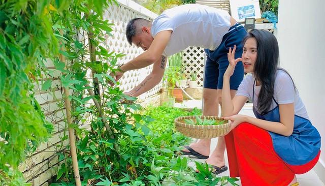 Khu vườn 100m2 xanh tươi của Thủy Tiên - Công Vinh trong biệt thự ở khu nhà giàu: Đầy rau trái xum xuê, ai cũng mơ ước! - Ảnh 10.