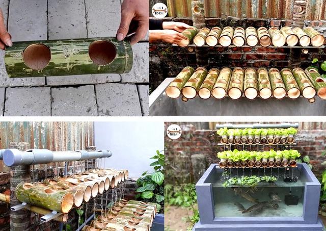 Làm thế nào để kết hợp vườn rau sạch và bể cá khi không gian sân nhà bạn quá chật hẹp? - Ảnh 2.