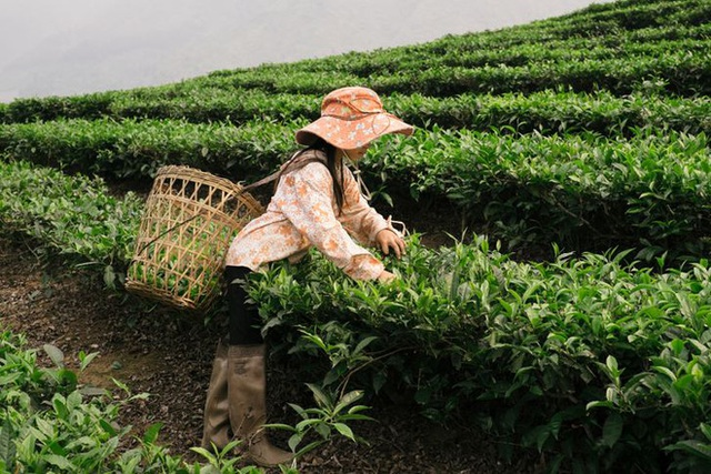Chu du châu Á 210 ngày, nhiếp ảnh gia Ukraine đặc biệt phải lòng Việt Nam, tung bộ ảnh 3 miền non nước đẹp đến mê hoặc - Ảnh 17.