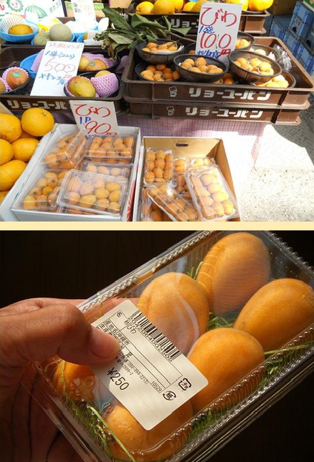 Nhật Bản có loại quả mọc dại đầy đường không ai hái, về đến Việt Nam có giá lên tới 4 triệu/kg, chỉ dành cho hội nhà giàu? - Ảnh 6.
