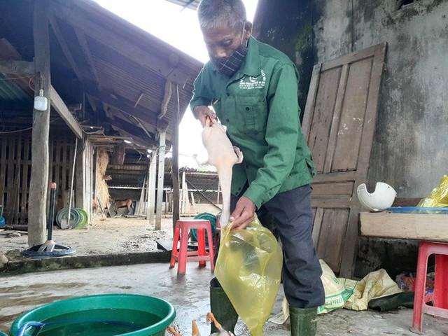 Bị phong tỏa, làng vịt nổi tiếng nhất Hà Tĩnh vắng khách ngày Tết Đoan Ngọ  - Ảnh 9.
