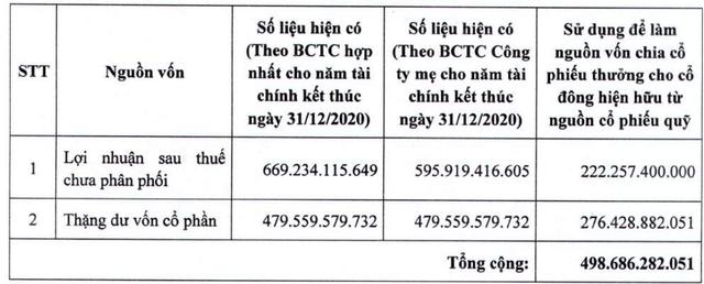 Năm Bảy Bảy (NBB) dùng 22 triệu cổ phiếu quỹ trị giá gần 500 tỷ đồng chia cho cổ đông - Ảnh 2.