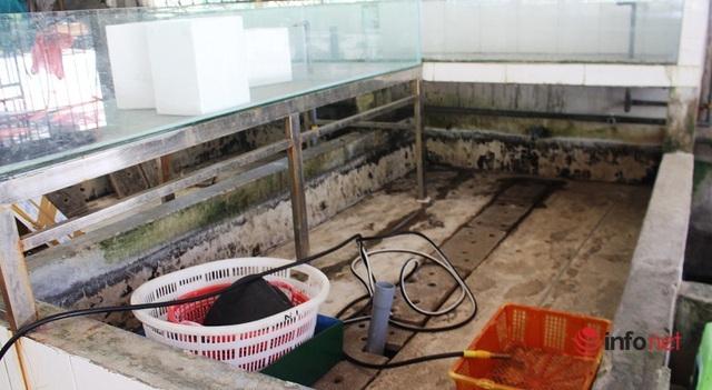 Mùa cao điểm du lịch, phố biển Cửa Lò vẫn vắng tanh, hải sản ế ẩm chưa từng có - Ảnh 13.
