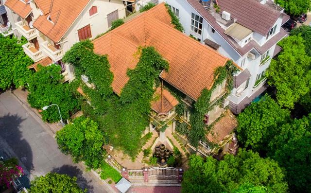 Cận cảnh ngôi biệt thự phủ toàn cây xanh giúp chủ nhà tránh nắng nóng gay gắt  - Ảnh 4.