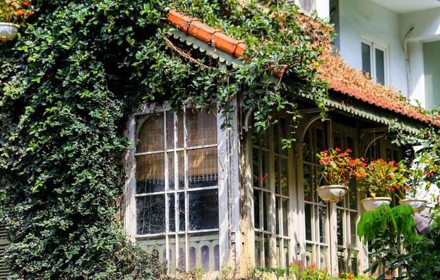 Cận cảnh ngôi biệt thự phủ toàn cây xanh giúp chủ nhà tránh nắng nóng gay gắt  - Ảnh 5.