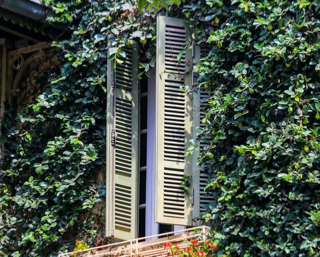 Cận cảnh ngôi biệt thự phủ toàn cây xanh giúp chủ nhà tránh nắng nóng gay gắt  - Ảnh 7.