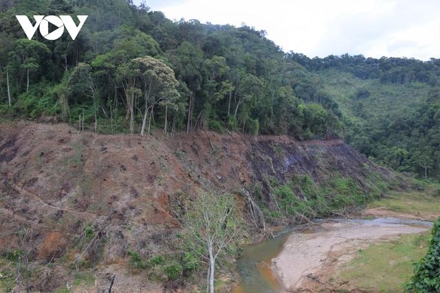 Cận cảnh thủy điện TrHy 13 năm xây chưa xong, cây rừng bị chặt ngổn ngang - Ảnh 8.