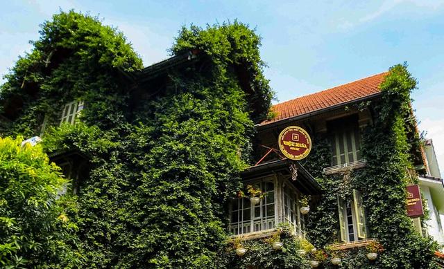 Cận cảnh ngôi biệt thự phủ toàn cây xanh giúp chủ nhà tránh nắng nóng gay gắt  - Ảnh 8.