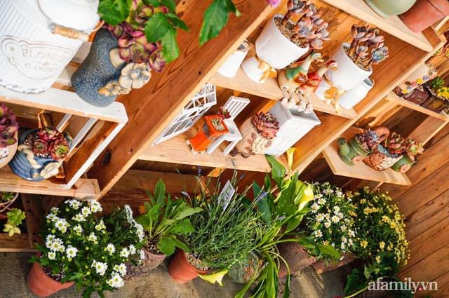 Khu vườn có hơn 100 loài sen đá rực rỡ trên sân thượng của vợ chồng trẻ Hải Phòng - Ảnh 8.