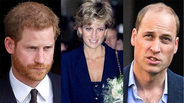 Harry đưa ra yêu cầu ngang ngược cho ngày trở về dự lễ tưởng niệm Công nương Diana sắp tới và Thái tử Charles tỏ rõ thái độ - Ảnh 1.