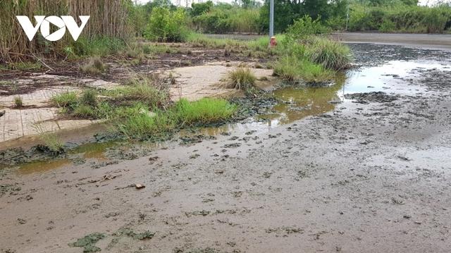Người dân không mặn mà với khu tái định cư ở huyện Nhà Bè, TP.HCM - Ảnh 1.