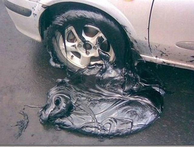 Chùm ảnh nắng nóng hãi hùng trên khắp thế giới: Tan chảy cả nhựa đường, ngựa chết cả đàn như bị thảm sát gây khiếp đảm - Ảnh 16.