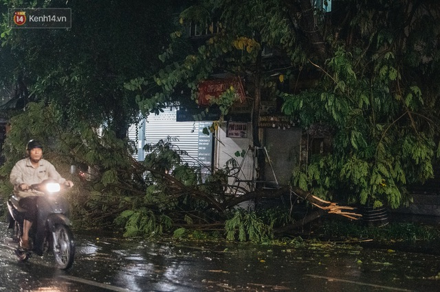 Chùm ảnh Hà Nội sau cơn mưa trắng trời: Cây đổ khắp phố phường, mất điện, người dân không kịp trở tay - Ảnh 11.