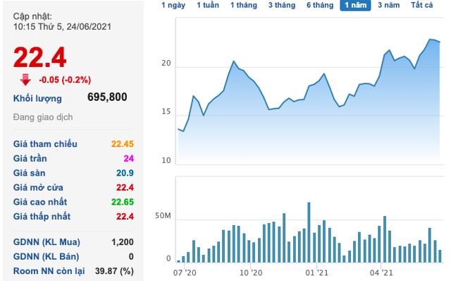 Gelex (GEX): Nhóm liên quan CEO Nguyễn Văn Tuấn muốn mua thêm 100 triệu cổ phiếu trong đợt phát hành giá ưu đãi 12.000 đồng/cp - Ảnh 1.