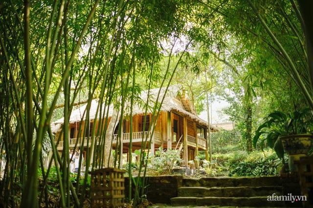 Cuộc sống yên bình trong ngôi nhà nhỏ và khu vườn xanh mát bóng cây ở ngoại thành Hà Nội - Ảnh 1.