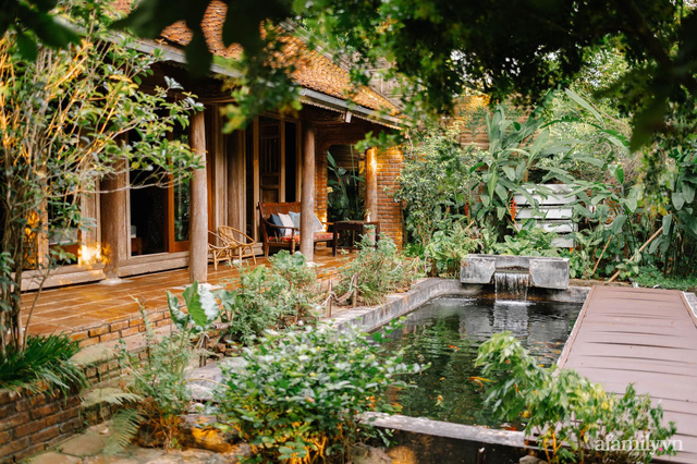 Cuộc sống yên bình trong ngôi nhà nhỏ và khu vườn xanh mát bóng cây ở ngoại thành Hà Nội - Ảnh 2.