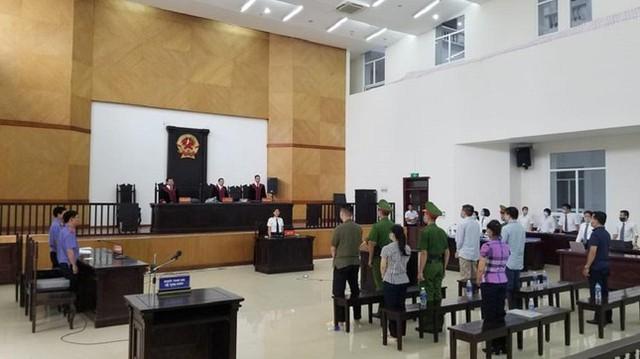 CDC 30 tỉnh, thành xin giảm nhẹ hình phạt cho ông Nguyễn Nhật Cảm và cấp dưới  - Ảnh 2.