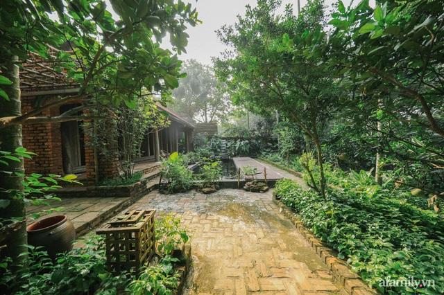 Cuộc sống yên bình trong ngôi nhà nhỏ và khu vườn xanh mát bóng cây ở ngoại thành Hà Nội - Ảnh 13.