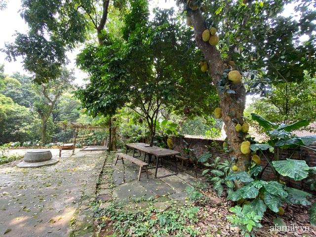 Cuộc sống yên bình trong ngôi nhà nhỏ và khu vườn xanh mát bóng cây ở ngoại thành Hà Nội - Ảnh 14.