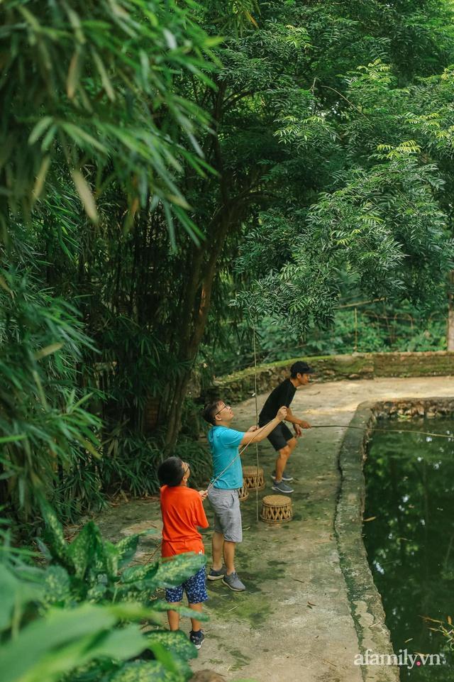 Cuộc sống yên bình trong ngôi nhà nhỏ và khu vườn xanh mát bóng cây ở ngoại thành Hà Nội - Ảnh 34.