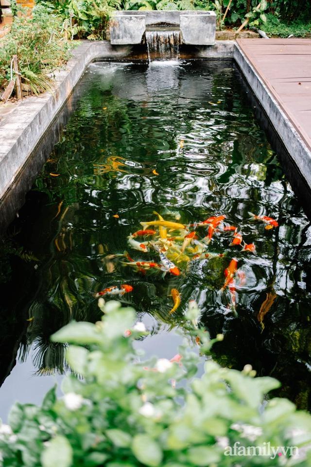 Cuộc sống yên bình trong ngôi nhà nhỏ và khu vườn xanh mát bóng cây ở ngoại thành Hà Nội - Ảnh 37.