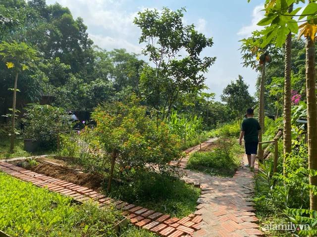 Cuộc sống yên bình trong ngôi nhà nhỏ và khu vườn xanh mát bóng cây ở ngoại thành Hà Nội - Ảnh 38.