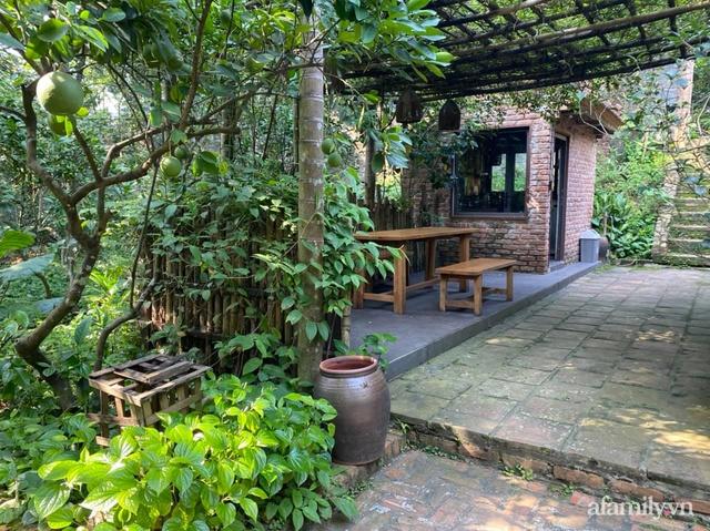 Cuộc sống yên bình trong ngôi nhà nhỏ và khu vườn xanh mát bóng cây ở ngoại thành Hà Nội - Ảnh 39.
